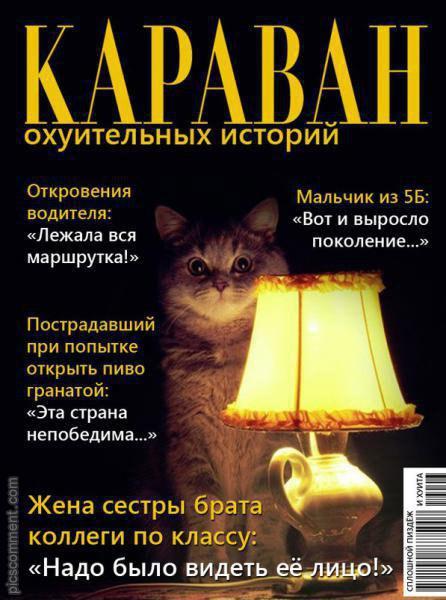 Онажемать и котята...