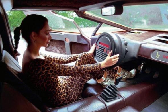 20 рулевых колес, которые разрушают психику водителя(20фото)