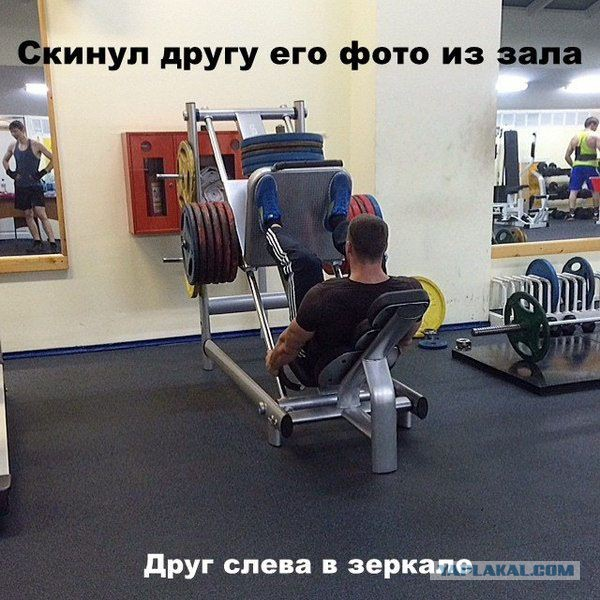 Смешные картинки на тему спортзала