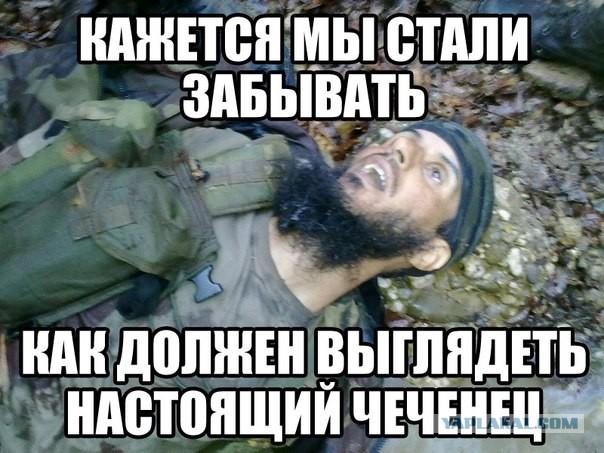 Чеченские смешные картинки про группу, про волков