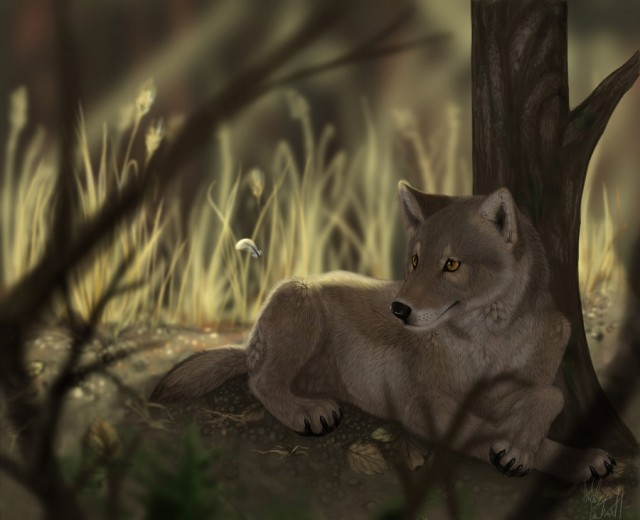 Анимированные картинки диких животных