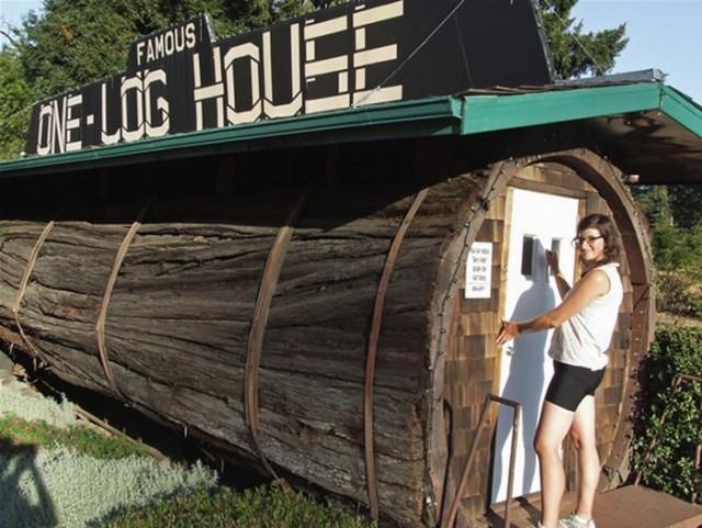 Дом в гигантском стволе дерева