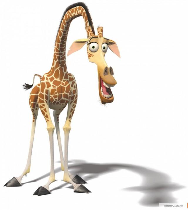 Картинки жирафа из мультфильмов