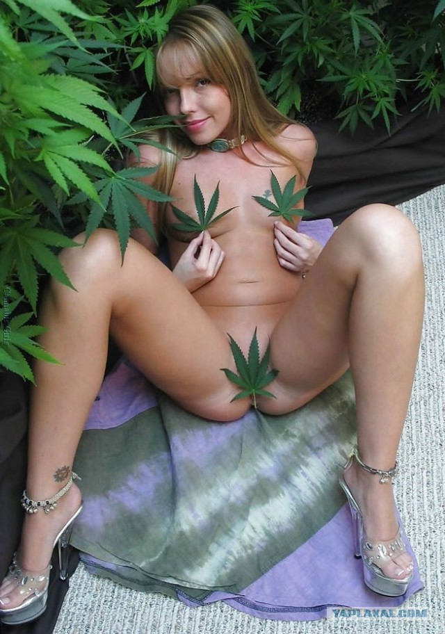 Nude marijuana girls pictures — photo 10