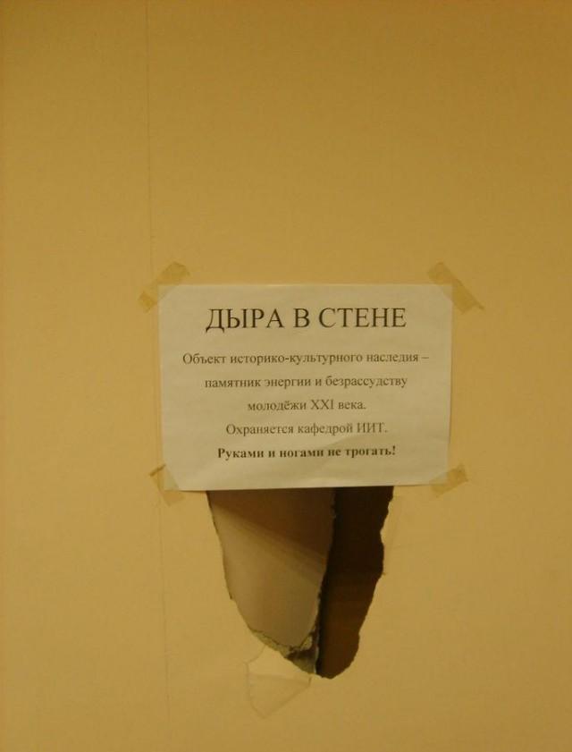 Смешные фото для вк на стену