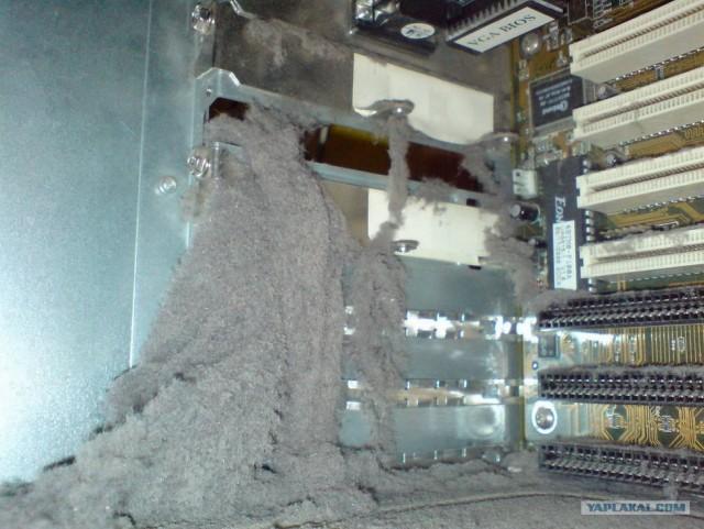 Пыль в компьютерах