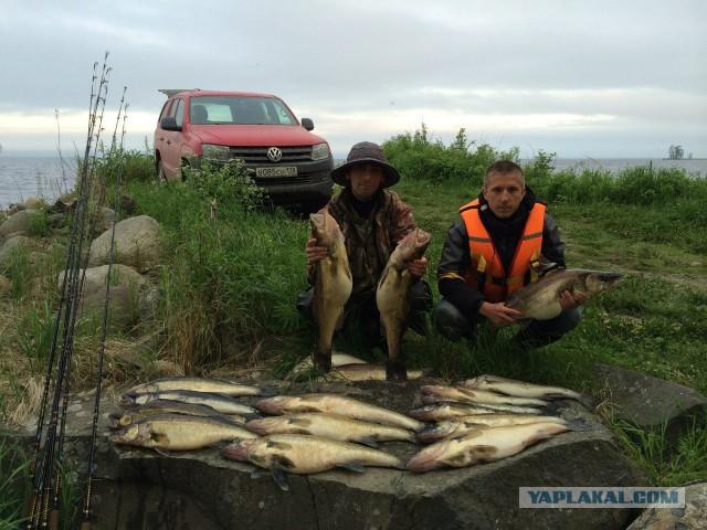 Новые видео рыбалки