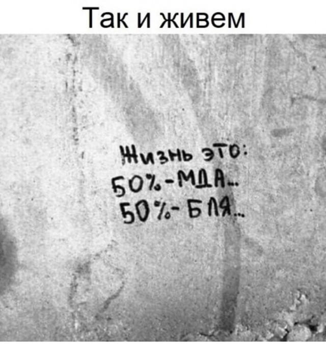 15690934.jpg