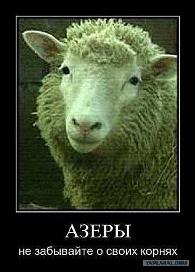 Азербайджанские картинки прикольные