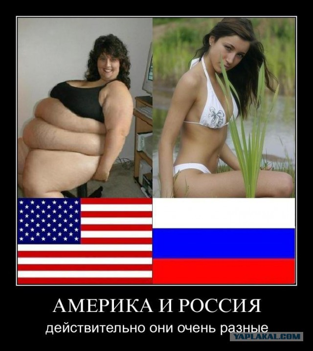 Американцы в россии приколы