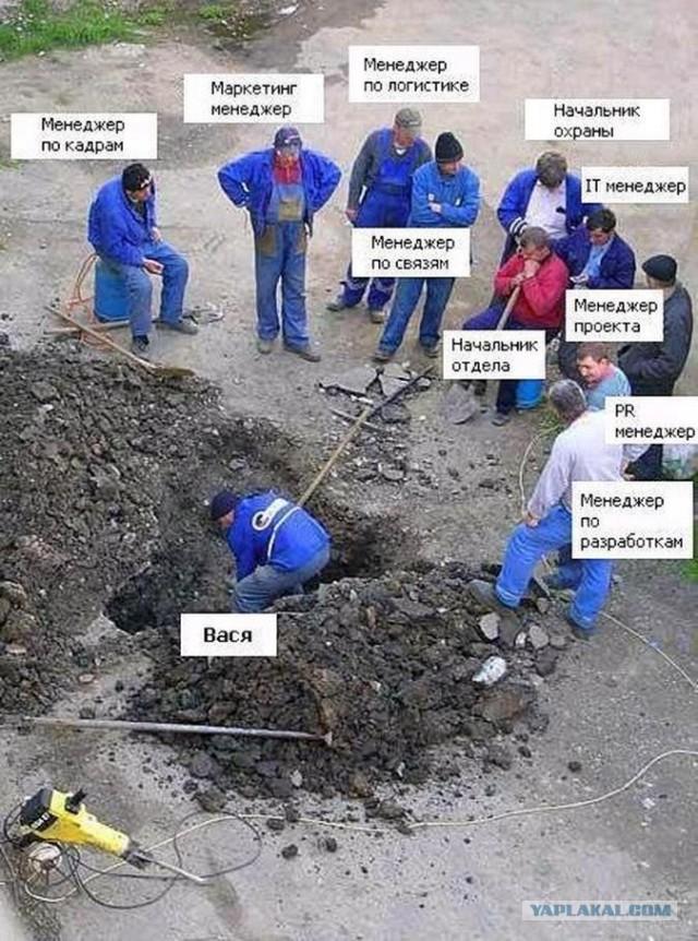 коллектив демотиваторы менеджеры вася селятся