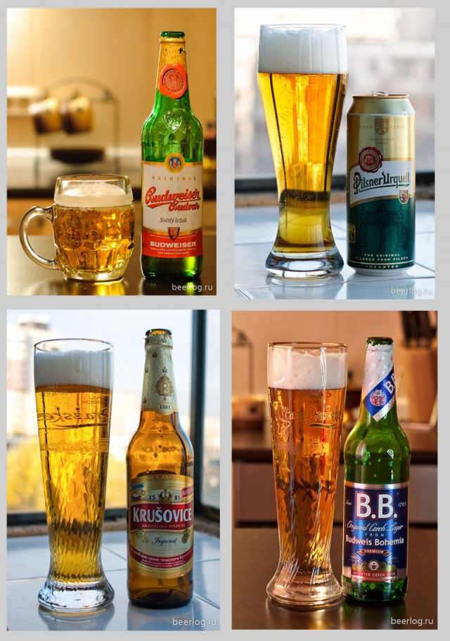 Руководство по типам пива
