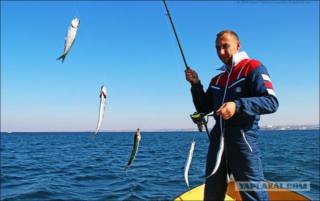 Снасти для ловли селедки в черном море