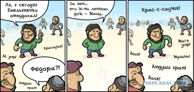 Бой с Емельяненко