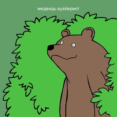 медведь в картинках шлюха