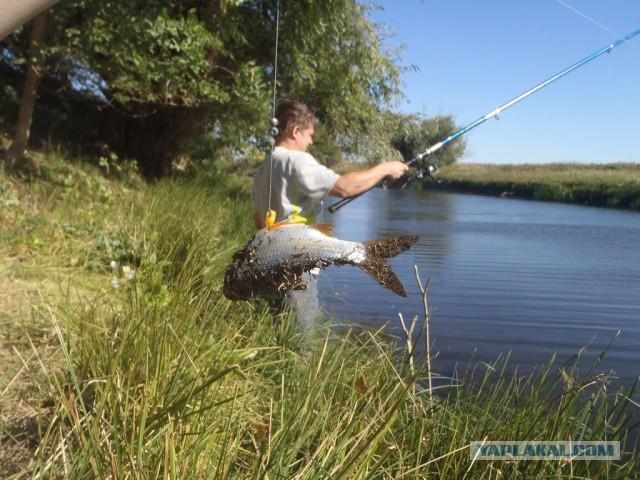 Сборник коротких рассказов о рыбалке