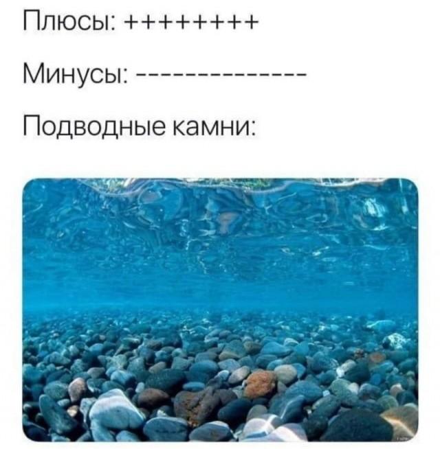 15279546.jpg