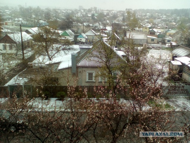 Погода в селе пристень белгородской области ровеньского района