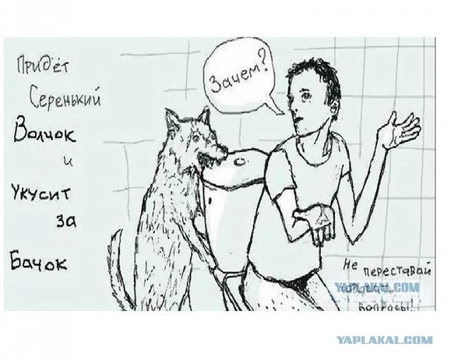 Картинка про серенького волчка