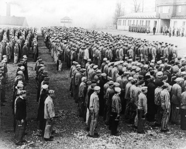 Эхо Войны. 68 лет со дня освобождения