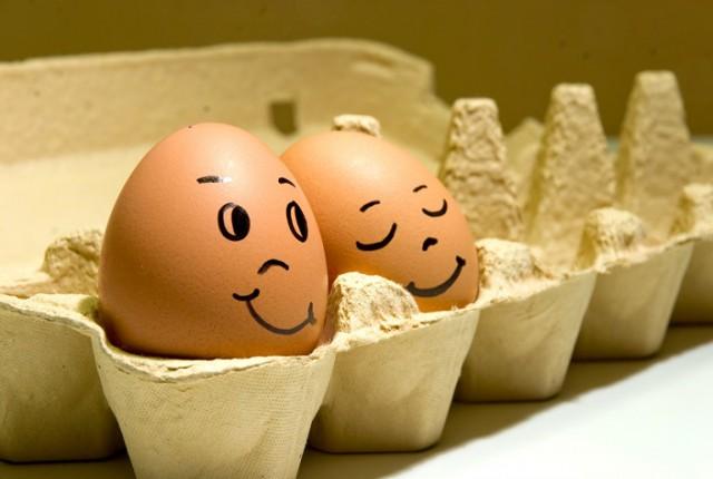 История Яйца