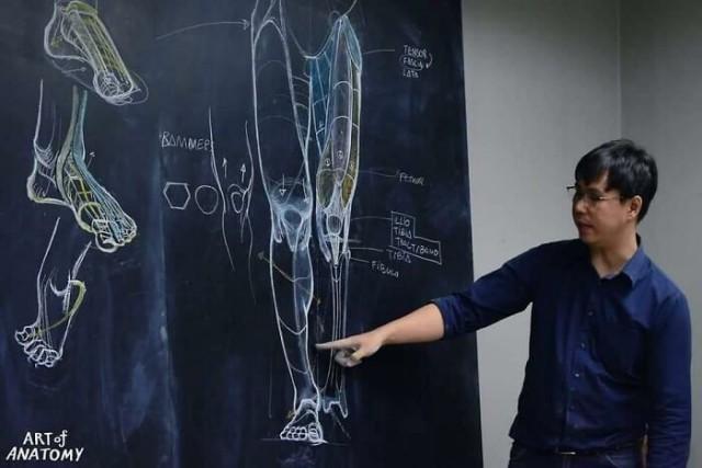 Учитель анатомии прославился благодаря рисункам на доске