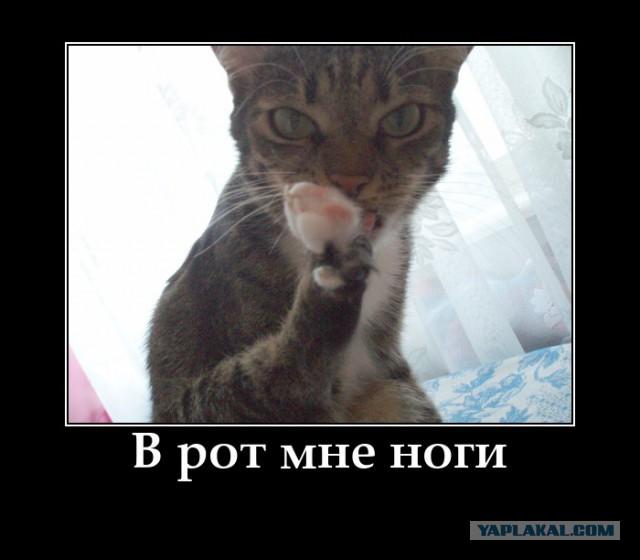 """""""Какая же я п*здатая!"""""""
