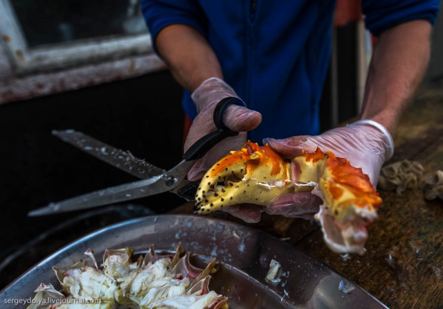 Путь краба: из океана на тарелку