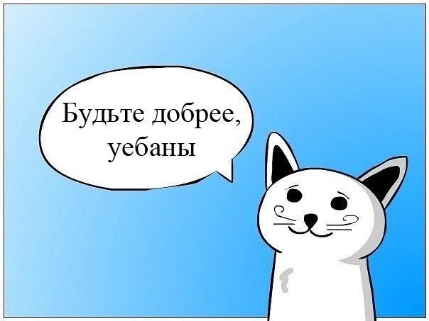 Красноярские волейболистки «Енисея» проведут